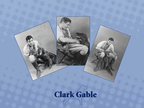 Clark Gable wallpaper