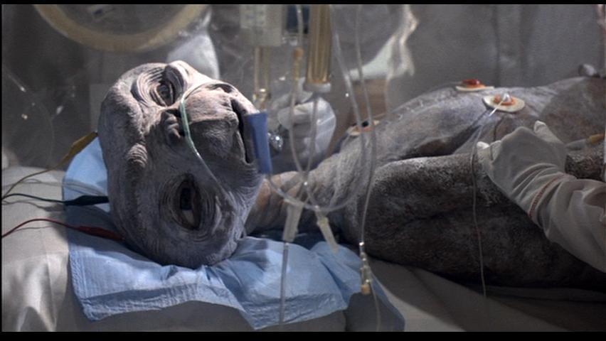 ETがベットの上でこちらを見る壁紙