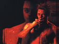 Fight Club wallpaper