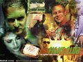 Fight Club wallpaper - fight-club wallpaper