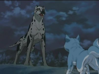 Ginga Densetsu Weed 壁紙 containing a dalmatian called From the ending of Weed