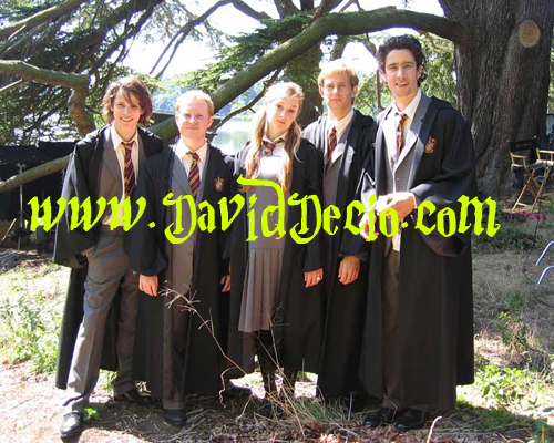 James, Lily, Sirius, Peter and Remus young