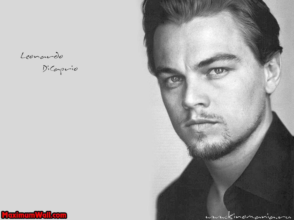 Leonardo - Picture Colection
