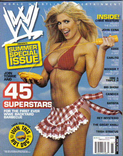 torrie wilson wallpaper possibly with anime entitled Torrie Wilson 2006