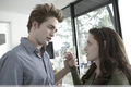 Twilight HQ Still - twilight-series photo