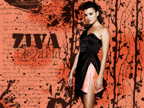 NCIS images Ziva David HD wallpaper and background photos
