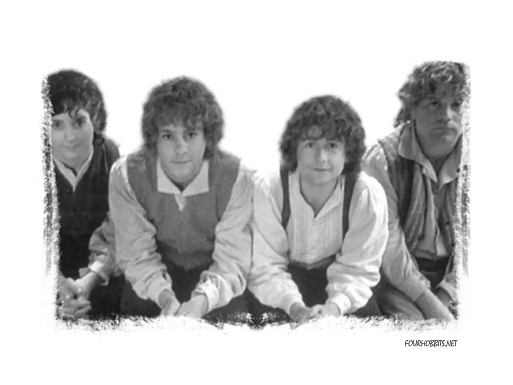 The Hobbits Samwise Gamgee Photo 5004971 Fanpop