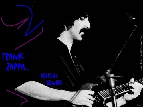 Frank Zappa... artistic genius