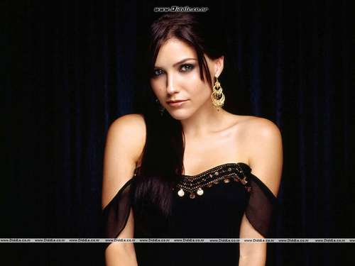 Sophia Bush wallpaper probably with a bustier, attractiveness, and a cocktail dress called ♥Sophia Bush♥