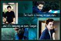 Even More.. - twilight-series photo