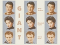 Giant - elizabeth-taylor wallpaper