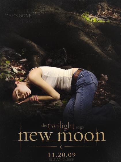 http://images2.fanpop.com/images/photos/5100000/He-s-Gone-twilight-series-5190947-420-563.jpg