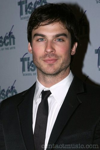 Ian Somerhalder cast as Damon