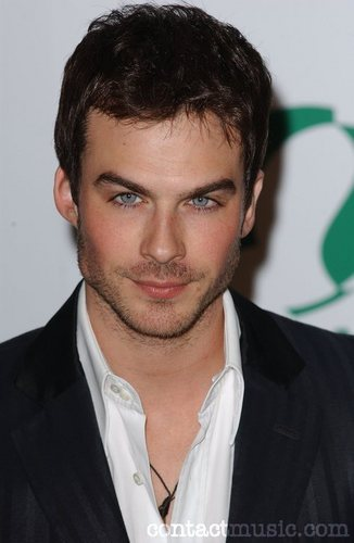 The Vampire Diaries kertas dinding containing a business suit titled Ian Somerhalder cast as Damon