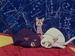 Luna,Artemis & Diana