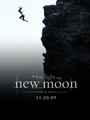 New Moon Poster  - twilight-series fan art