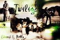 New! - twilight-series photo
