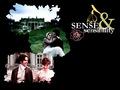 S&S (2008)