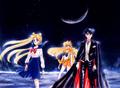 Usagi, Tuxedo Kamen, & Sailor Venus