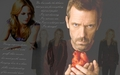 house-md - Wallpaper House & Cameron wallpaper