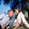 """Love in the Afternoon"" - audrey-hepburn photo"