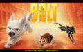 Bolt Trio - disneys-bolt wallpaper