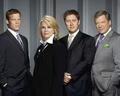Boston Legal - boston-legal photo