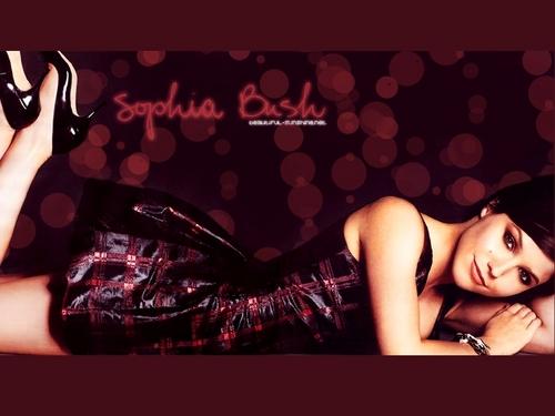 Brooke Davis / Sophia بش