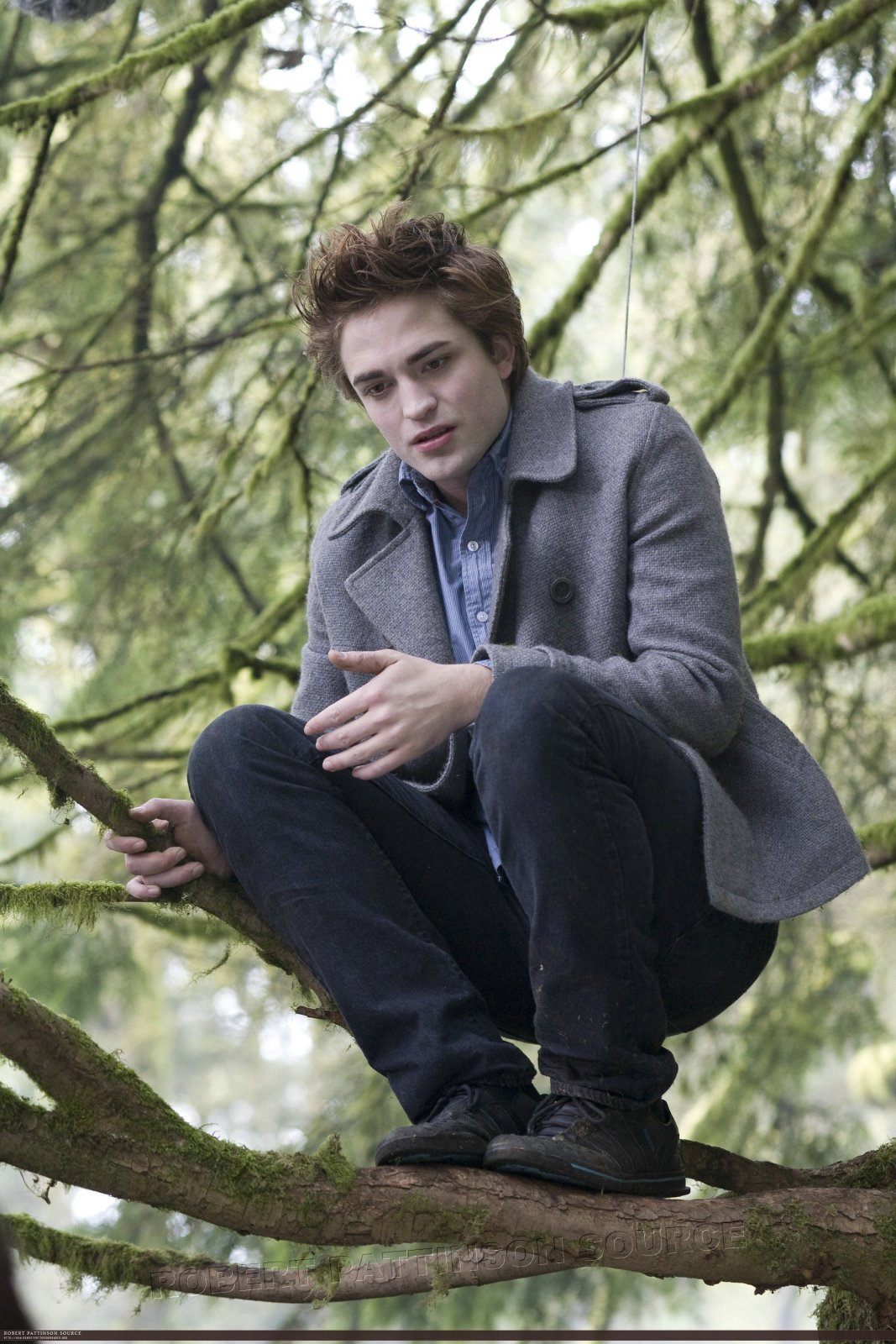 Team twilight edward cullen