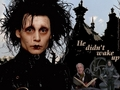 He didn't wake up - edward-scissorhands wallpaper