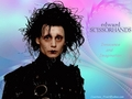 Innocence and Imagination - edward-scissorhands wallpaper