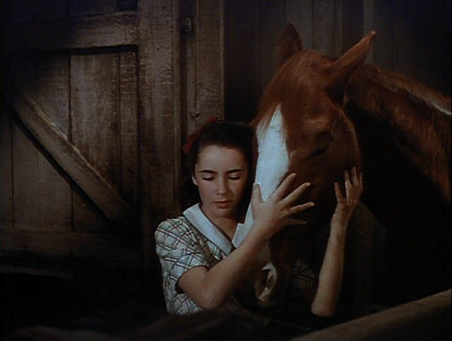 elizabeth taylor national velvet wwwimgkidcom the
