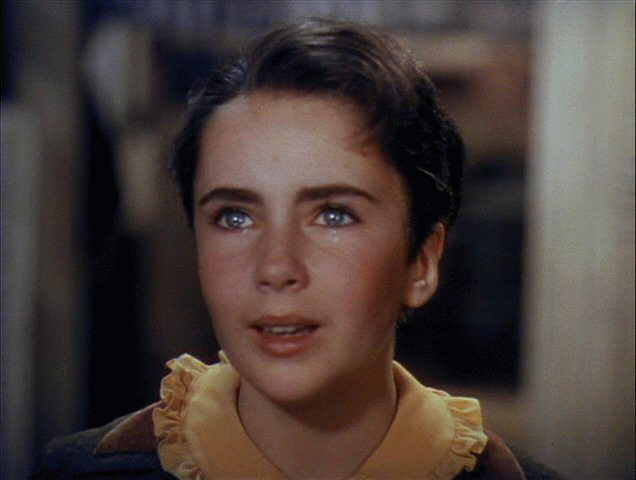 elizabeth taylor images liz in national velvet wallpaper