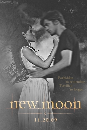New Moon Fan Made Posters - twilight-series Fan Art