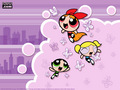 PPG Wallpaper - powerpuff-girls wallpaper