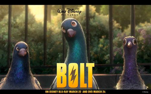 Disney's Bolt پیپر وال entitled Pigeons
