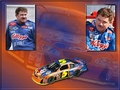 Terry Labonte - nascar wallpaper