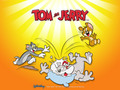 Tom & Jerry Wallpaper - tom-and-jerry wallpaper