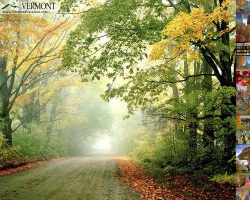 Vermont seasonal achtergronden