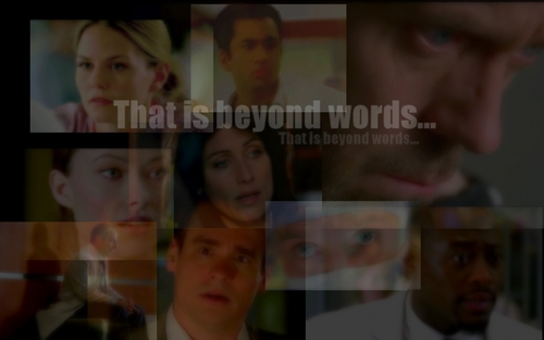 House M.D. images Wall new promo HD wallpaper and background photos