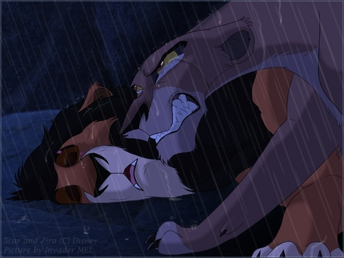the lion king wallpaper entitled Zira & Scar