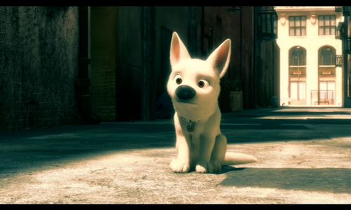 cute pictures of Bolt and Mittens - disneys-bolt Screencap