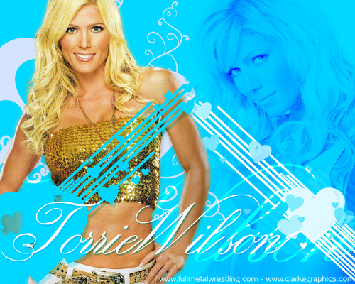 torrie wilson fondo de pantalla probably with a sign and a portrait titled torrie wilson
