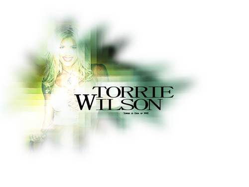 Torrie Wilson پیپر وال containing a portrait entitled torrie wilson