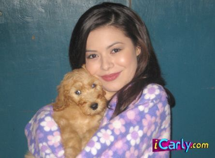 iCarly achtergrond titled Carly and a cute puppy