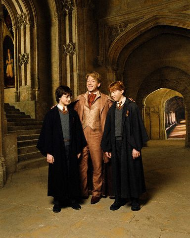 Gilderoy Lockhart, Harry & Ron