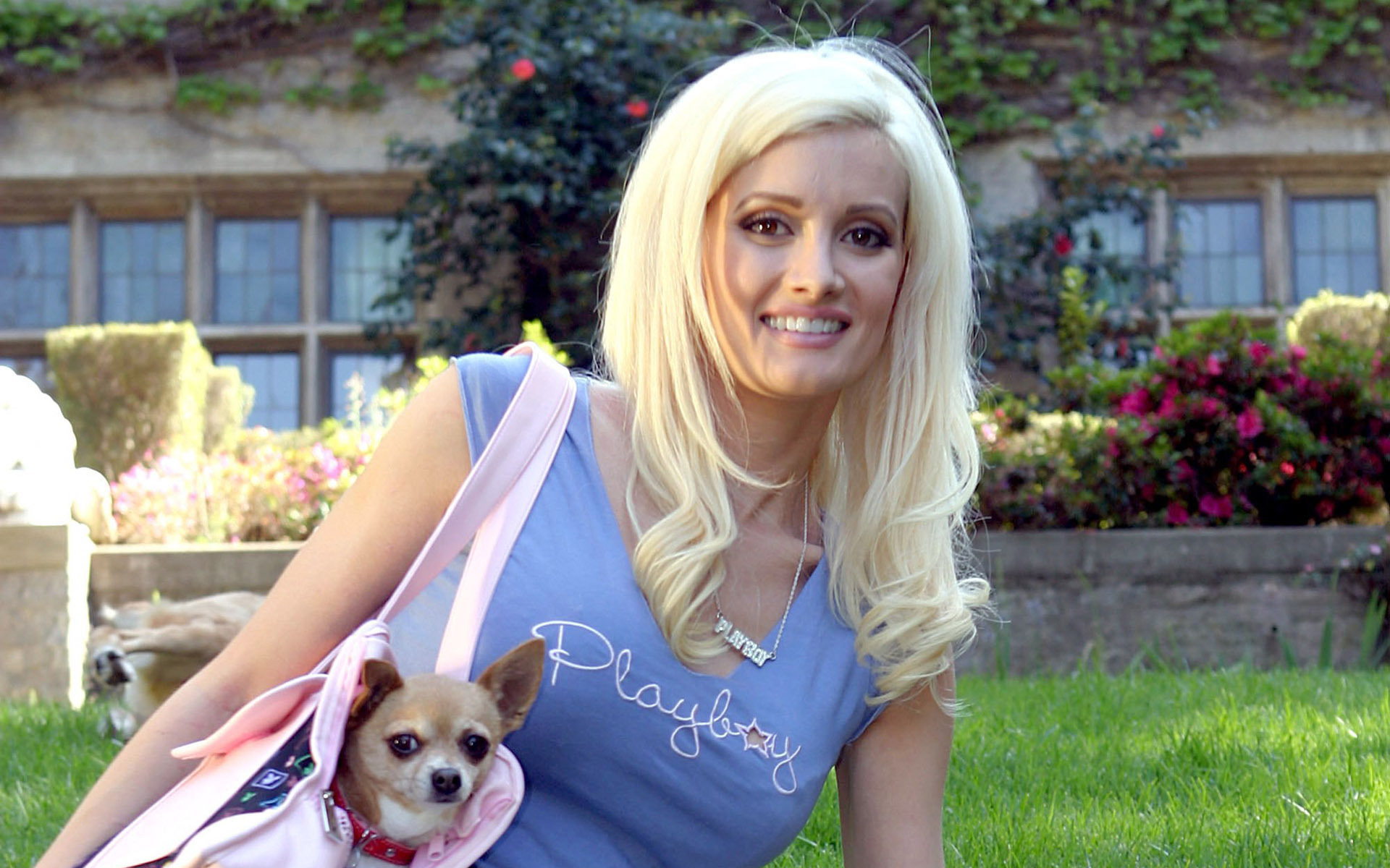 Holly Madison Beautiful Wallpapers