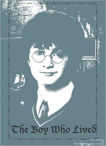 Harry banner