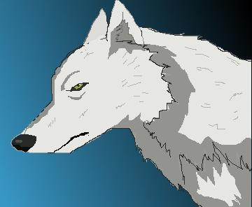 Images of Wolfs Rain Wip By - #SC