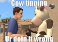 LOL Sims